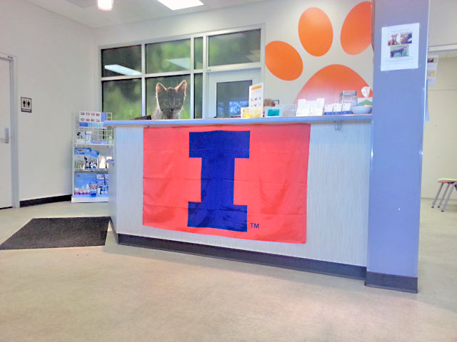 Medical District Veterinary Clinic at Illinois Reception Desk