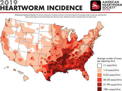 2019 Heartworm Incidence map